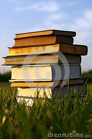 Free Old Books Stacked In Grass Stock Images - 32318854