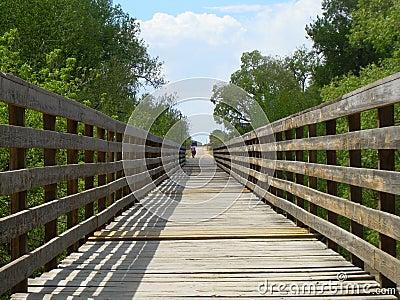 Old Bridge  (close up)