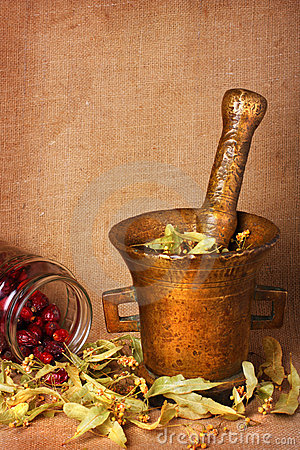 Free Old Bronze Mortar With Herbs And Rose Hips Royalty Free Stock Photo - 9794995