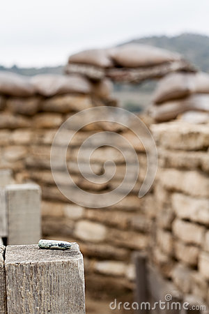 Old bullet in a defensive fighting position