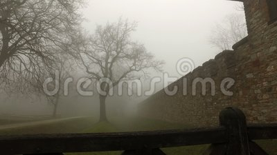 Old Castle walls in misty foggy nature stock footage