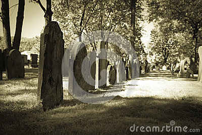 Old Cemeteries - Row of Tombstones