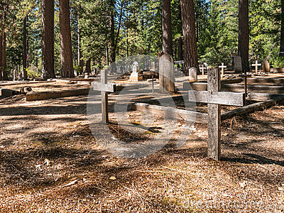 cemetery in the forest - photo #14