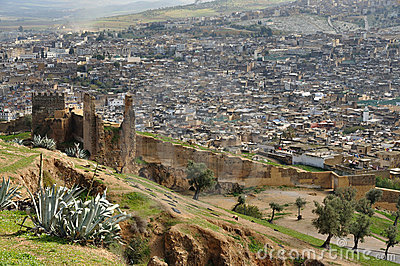 The old city wall and the medina of Fes