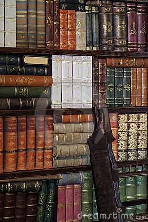 Free Old Classic Books On Bookshelf Royalty Free Stock Photos - 11305688