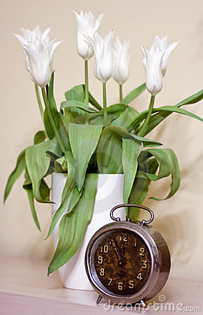Old clock and tulips