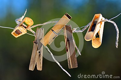 Old clothespins.