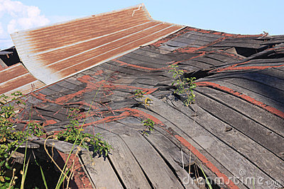 Old Collapsed Barn 1