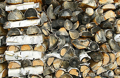 Old cord of paper birch firewood close up