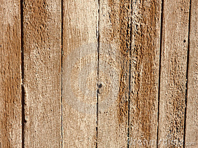 Old damaged wood texture