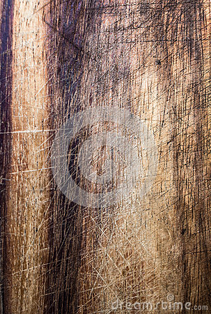 Free Old Dark Wood Texture, Vintage Natural Oak Background With Wood  Stock Photography - 34076772