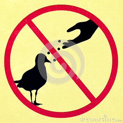 Free Old Dirty Sign With Symbol Signifying DO NOT FEED BIRDS Royalty Free Stock Photos - 41975548
