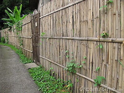 Old door and bamboo fence