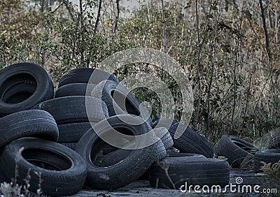 Old dumped tires