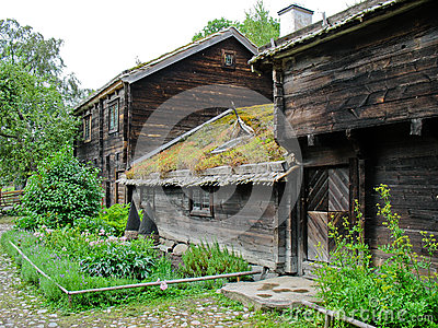 Old ecological swedish cabin