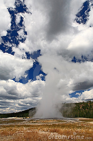 The Old Faithful Geyser in Yellowstone