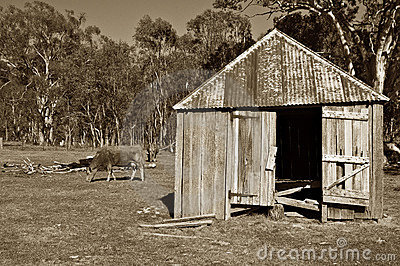 Old farm rural landscape