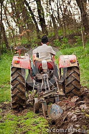 Old farmer plowing