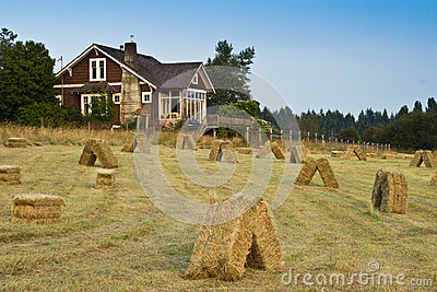 Old Farmhouse with Hay Field