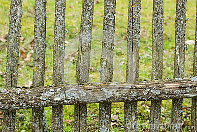 Old fence.