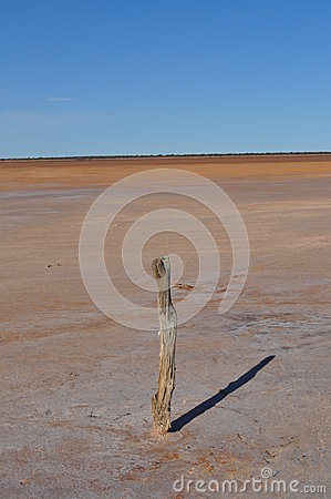 Old fence post on a salt lake
