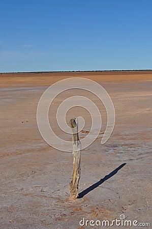 Old fence post on a salt lake