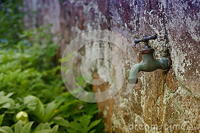 Garden Faucet Stock Photo Image 50405374