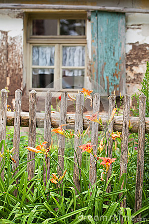 Old garden fence