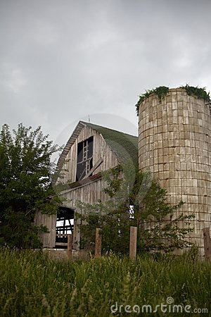 Old, Gray, Abandoned Barn and Overgrown Silo Withs