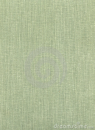 The old green book cover made of cloth.