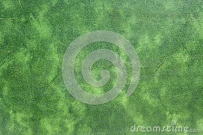 Old green leather texture