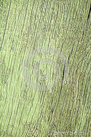 Old green wood background texture