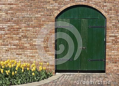 Old Green Wooden Door with Yellow Tulips
