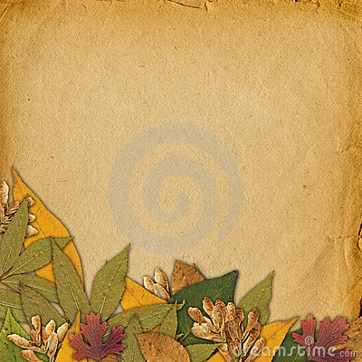 Old grunge abstract background with autumn leaves