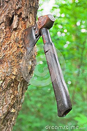 Old hatchet in wood stem