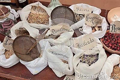 Old herbalist s shop