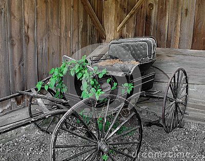 Old horse drawn buggy.