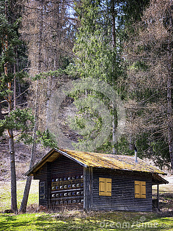 Old Hut Stock Photo Image 38960949