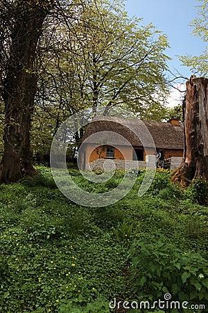 Old irish cottage 1