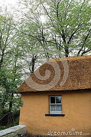 Free Old Irish Cottage 2 Royalty Free Stock Photos - 5648338