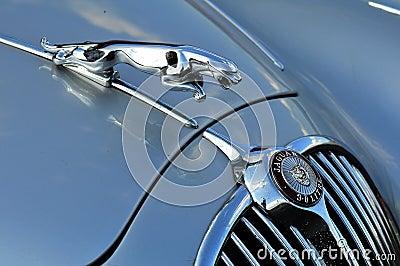 An old jaguar car symbol Editorial Photography