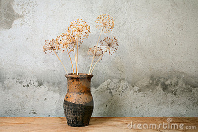 Old jug with dry flower