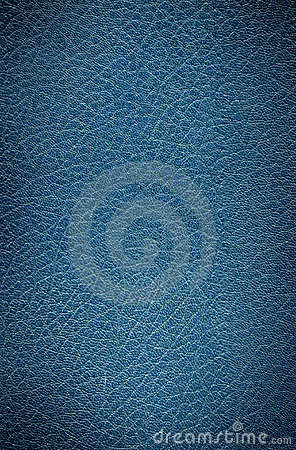 Free Old Leather Book Texture Royalty Free Stock Image - 3779676
