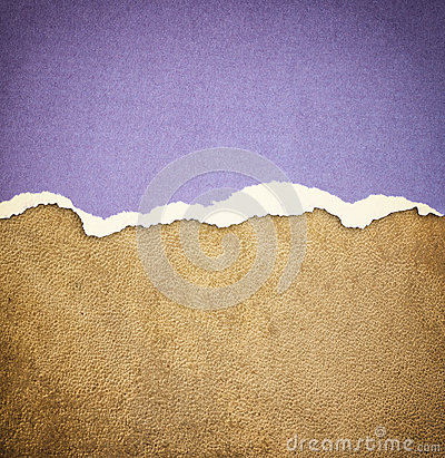 Old leather texture background pattern and vintage torn paper.
