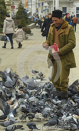 Free Old Man Feeding Pigeons Royalty Free Stock Photo - 109857675