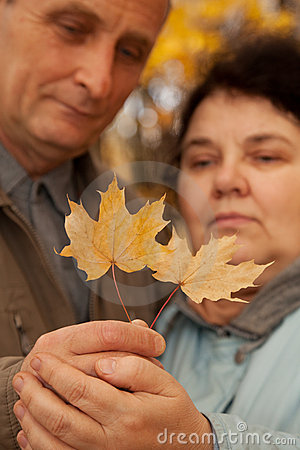 Old man and old woman hold maple leaves on hands