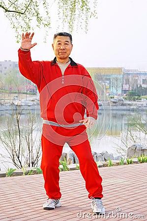 Free Old Man Play Taiji Boxing Stock Image - 4795611