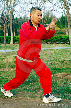Free Old Man Play Taiji Boxing Stock Photos - 4820793