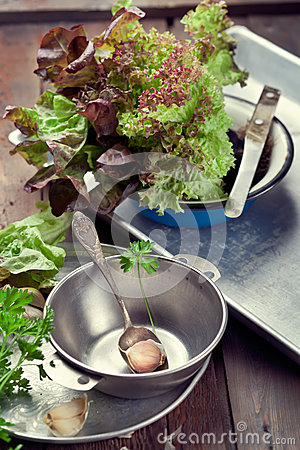 Free Old Metal Bowl, Trays And Kitchen Utensils With Leaves Of Salad Stock Images - 39964674
