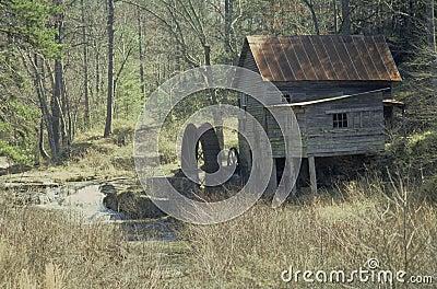 Old Mill, Georgia, United States